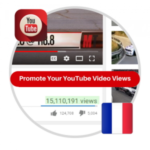 Youtube Views From France