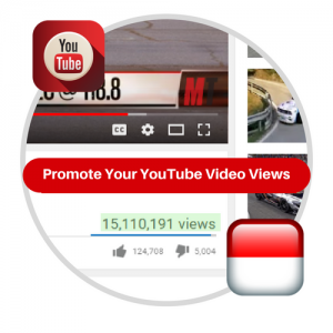 Youtube Views From Indonesia
